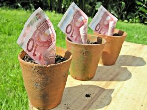 Euros - Niet altijd even gemakkelijk te oogsten